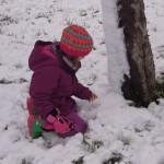 Tiere im Winter, Foto Familie