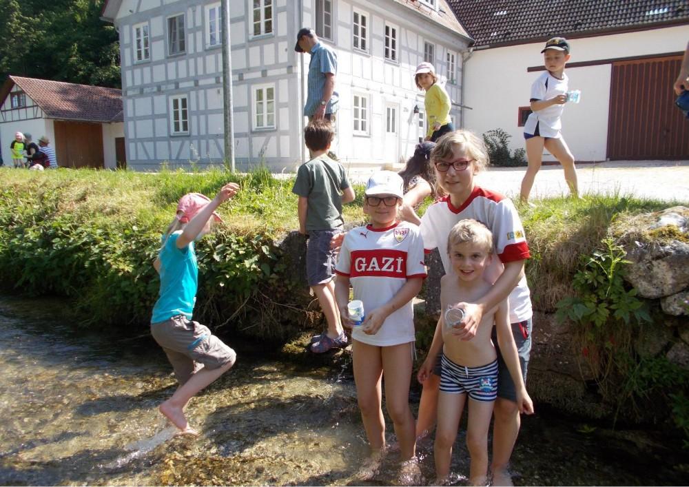 https://familien.albverein.net/files/2017/05/170528_Bachwanderung-Tomerdingen-2.jpg