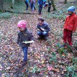 Herbstwanderung Familiengruppe Tomerdingen,Foto: K. Klahold