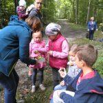 Im Zwergenwald, Foto: A. Antlauf